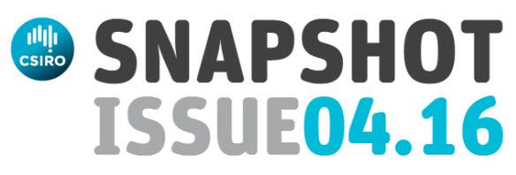 Snapshot issue 04.16