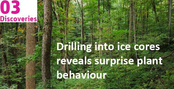 Drilling into ice cores reveals surprise plant behaviour