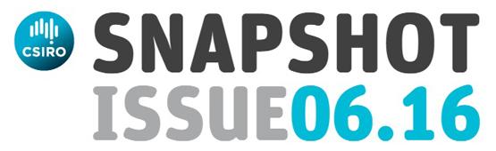 Snapshot Issue 06.16