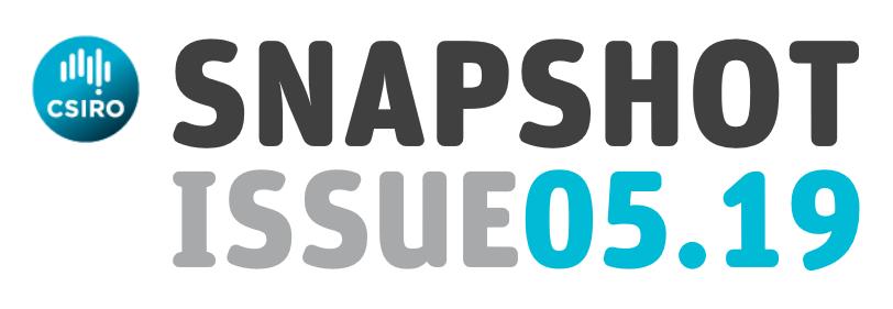 snapshot issue 05.19